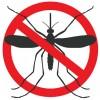 Народные средства защиты от мух и комаров - полезные советы
