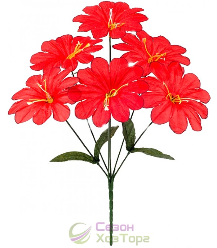Заказ цветов с доставкой в боровцах — img 12