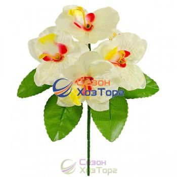 Букет Орхидеи бордюр 21см (№149)